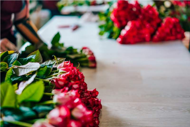 fresh-cut-red-roses-lie-on-the-table