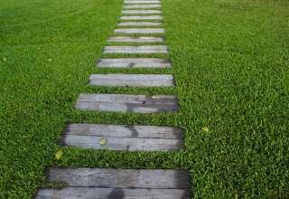 garden-path-steps