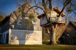 treehouse-barn-farm-yard-wood-tree